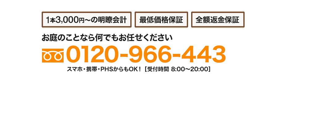 フリーダイヤル 0120-966-443 スマホ・携帯・PHS可 [受付時間 8:00~20:00]