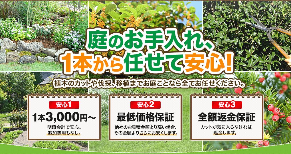 庭のお手入れ、1本から任せて安心!植木のカットや伐採、移植までお庭ことなら全てお任せください。